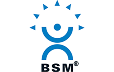 Picture for manufacturer BSM