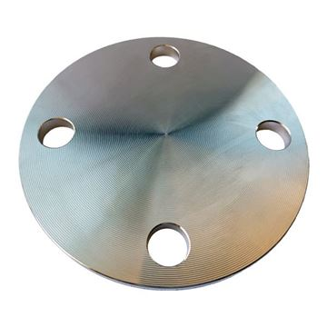 Picture of 65NB TABLE D BLIND FLANGE 316L