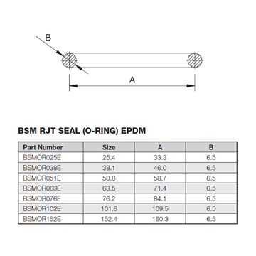 Picture of 25.4 BSM EPDM ORing