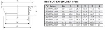 Picture of 76.2 BSM FLAT FACE BUTTWELD LINER CF8M