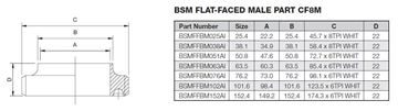 Picture of 25.4 BSM FLAT FACE BUTTWELD MALE PART CF8M