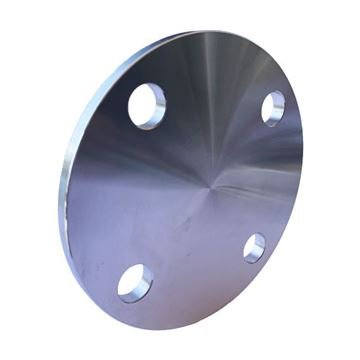 Picture of 125NB TABLE D BLIND FLANGE 304L