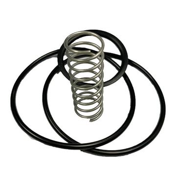 Picture of 63.5 NON-RETURN VALVE SERVICE KIT SPRING/O-RING 316