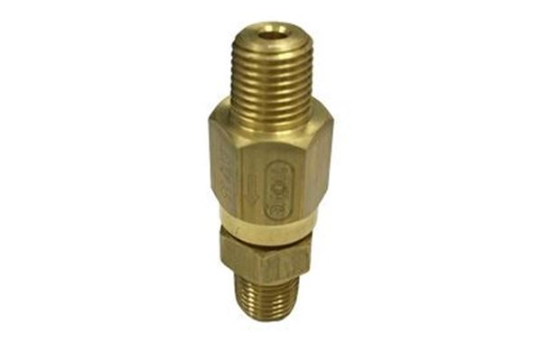Picture for category Brass Check Valve