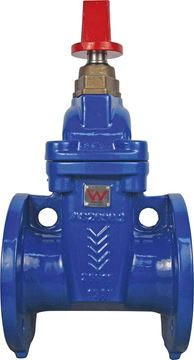 Picture of 80 TD FLANGED GATE VALVE RESILIENT SEAT FBE DI BODY CWC HAND WHEEL AS2638.2 WATERMARK