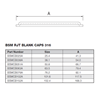 Picture of 152.4 BSM BLANK CAP 316