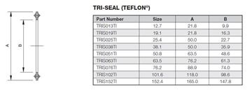 Picture of 152.4 TriClamp SEAL TEFLON